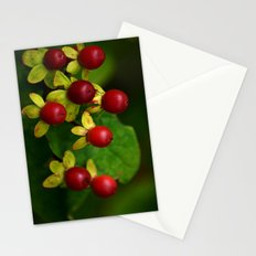 Berry Good! Stationery Cards