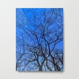 Blue Winter Metal Print