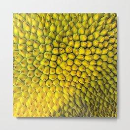 Jackfruit Metal Print