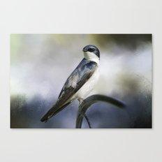 Tree Swallowtail Canvas Print