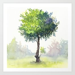 Tree Study Art Print