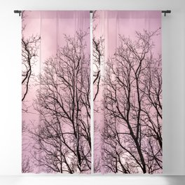 Naked trees, pink cloudy sky Blackout Curtain