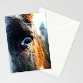 Horse Blue Watch Eye Stationery Cards
