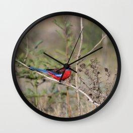 Crimson Rosella Bird Wall Clock