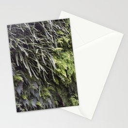 Longwood Gardens Autumn Series 189 Stationery Cards