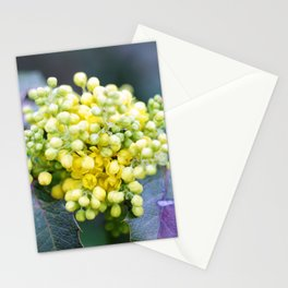 Spring flowers. Stationery Cards