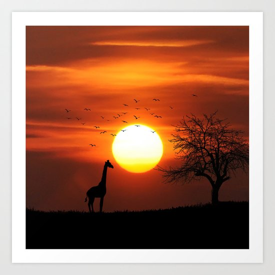Giraffe sundown Art Print