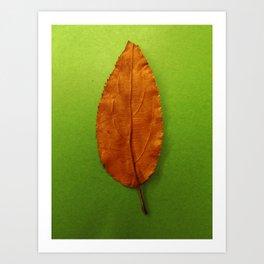 Spring meets Fall Art Print