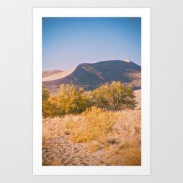 Autumn Sand Dune Art Print
