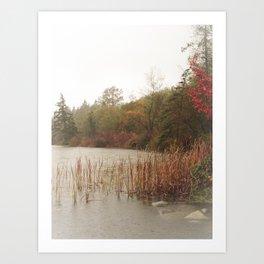 Deer Lake Decrescendo Art Print