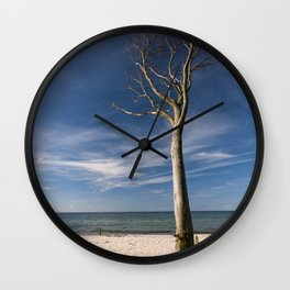 storm-tossed tree at the sea - Beach Ocean Wall Clock