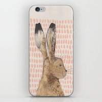 hare iPhone & iPod Skins featuring Hare by stephanie cole DESIGN