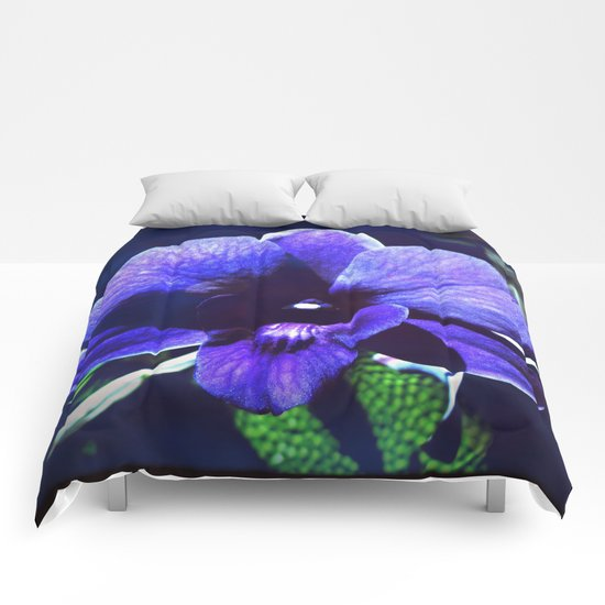 The Amethyst Orchid Comforters