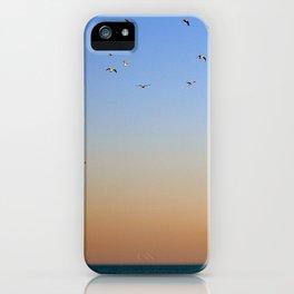 Seagulls Over Lake Michigan iPhone Case