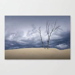 Wind Swept Clouds over the Dunes Canvas Print