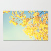 golden Canvas Prints featuring golden by Life Through the Lens