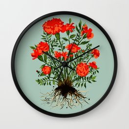 Marigold plant flower portrait with sage background Wall Clock