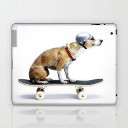 Skate Punk - Skateboarding Chihuahua Dog inTiny Helmet Laptop & iPad Skin