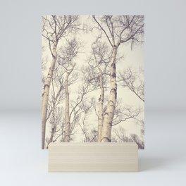 Winter Birch Trees Mini Art Print
