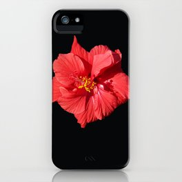 Red Hibicus DPG150523 iPhone Case