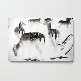 Cold deer Metal Print