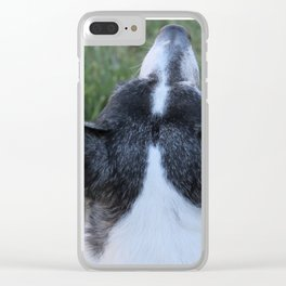 An Old Wise Dog Nose Clear iPhone Case