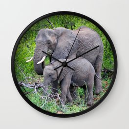 african elephant mother with baby Wall Clock