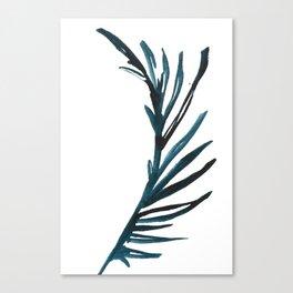 PALM NO.009 Canvas Print