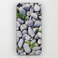 Sea Stones - Gray Rocks, Texture, Pattern iPhone & iPod Skin