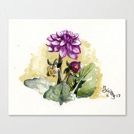 Watercolour Dhalia Canvas Print