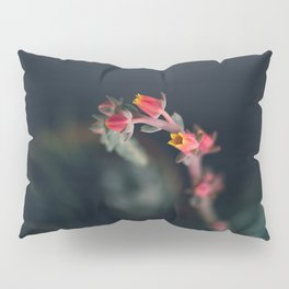 Succulent (3) Pillow Sham