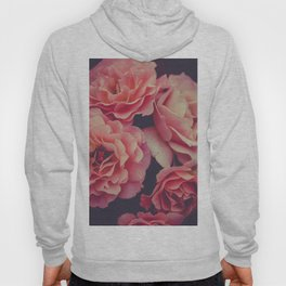 Roses in the night garden Hoody