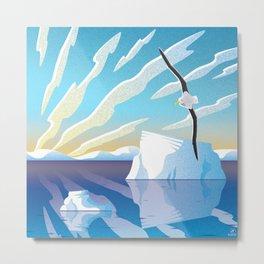 Antarctic Albatross Metal Print