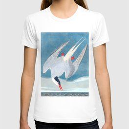Arctic Tern James Audubon Vintage Scientific Illustration American Birds T-shirt