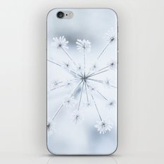 Beautiful Dry Flower with Ice Crystals iPhone & iPod Skin