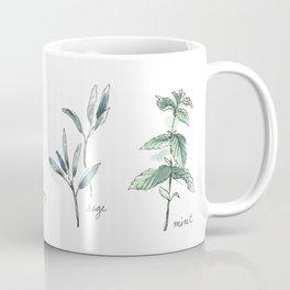 Herbs Botanical Illustration Coffee Mug