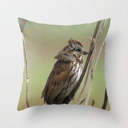 Nisqually Wildlife Refuge Throw Pillow