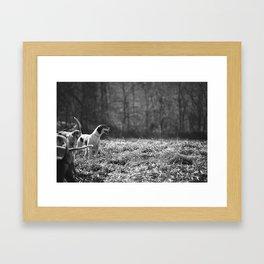 Foxhound Framed Art Print