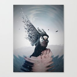 This bird that sings with its feathers by GEN Z Canvas Print