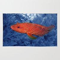 trout Area & Throw Rugs featuring Coral Trout by Serenity Photography