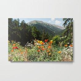 Mountain garden in Switzerland mountains Metal Print