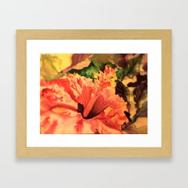 Red Hybiscus Framed Art Print