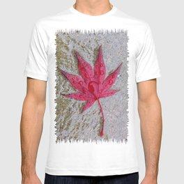 Wet Stars T-shirt