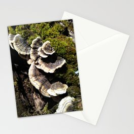spring sporelings Stationery Cards