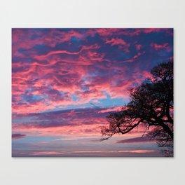 Dawn sky Canvas Print