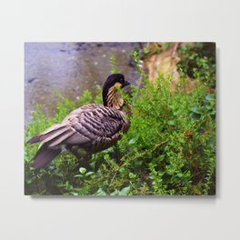 ashen feathers Metal Print