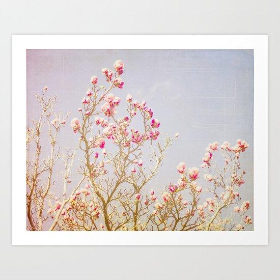 Sweet Pink Magnolias Art Print