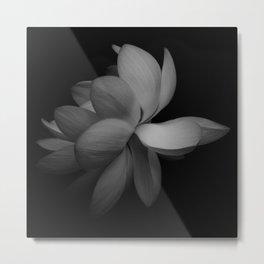 Black & White Lotus Metal Print