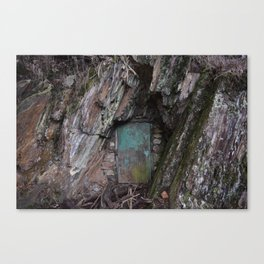 Rock Door Canvas Print