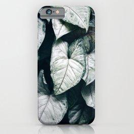 Arrowhead Vine iPhone Case